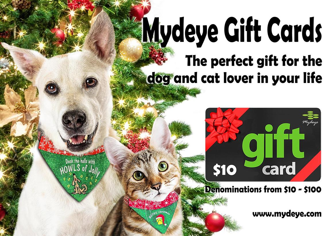 Christmas Cat and Dog White Web Banner