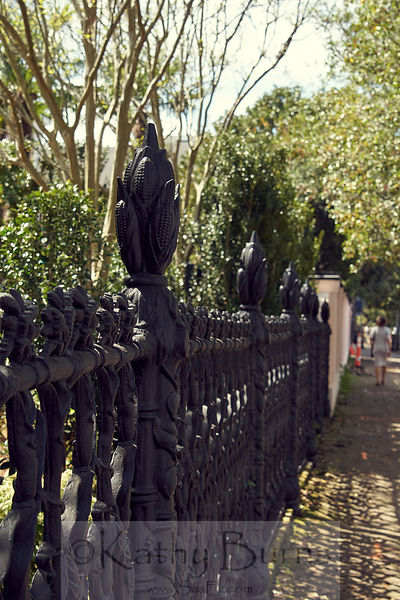 New Orleans cornstalk fence