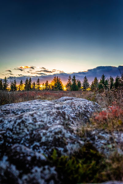 Autumn Sunset in Dolly Sods Wilderness West Virgina