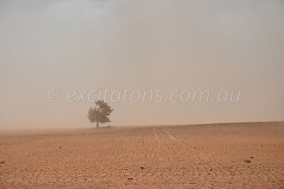 Dusty landscape west of Mildura.