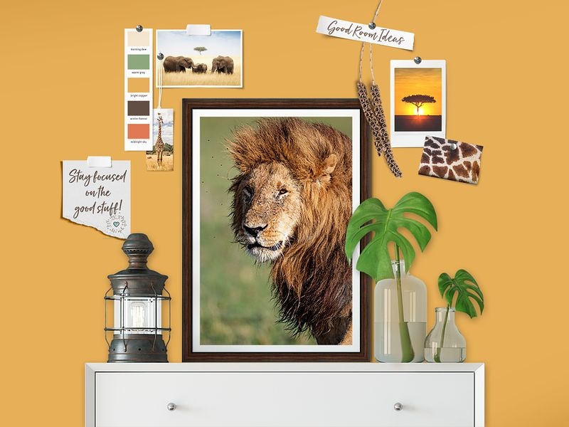 Room_Design_Wildlife_copy