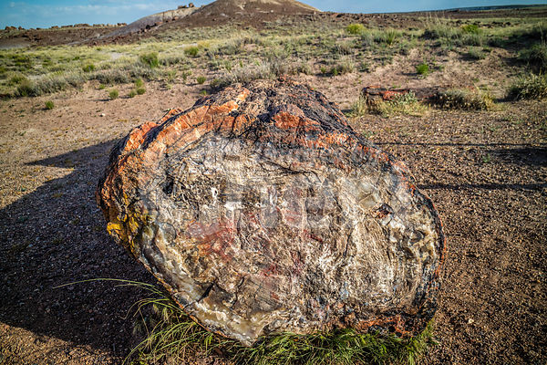 The Newspaper Rock in Petrified Forest National Park, Arizona