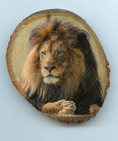 Lion_small_wood