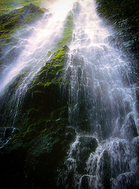 Secret Waipio Waterfall