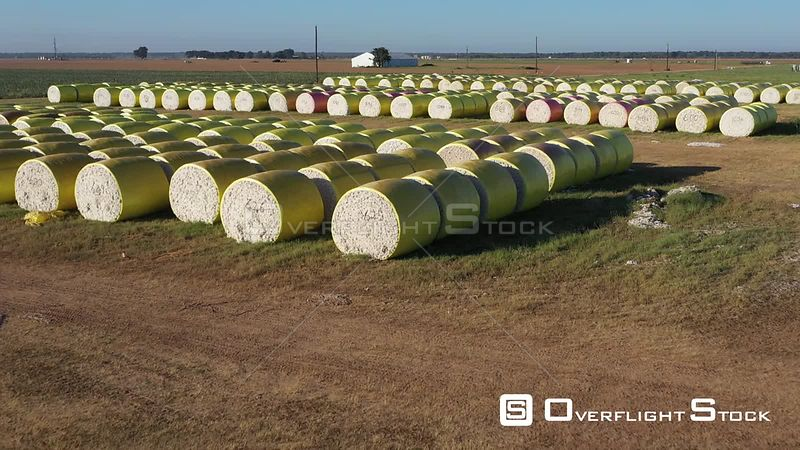 Yellow and Pink Bales of Cotton, Brazos County, Texas, USA