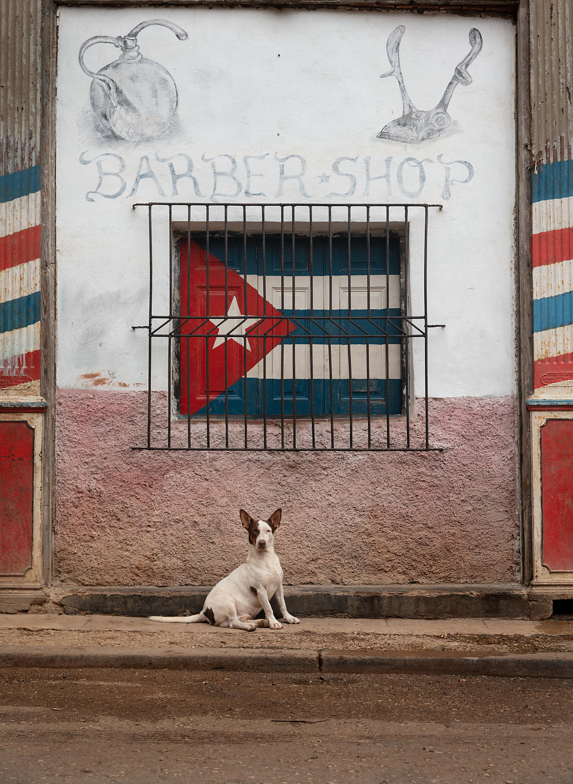 Dog_Havana_Cuba_Photography