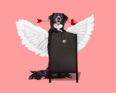 Cute Valentine's Day Dog With Blank Chalkboard Sign