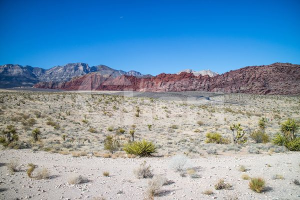 Meonkopi Loop in Red Rock Canyon Conservation Area, Nevada