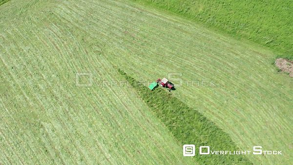 Tractor Harvesting a Hay Field Italy