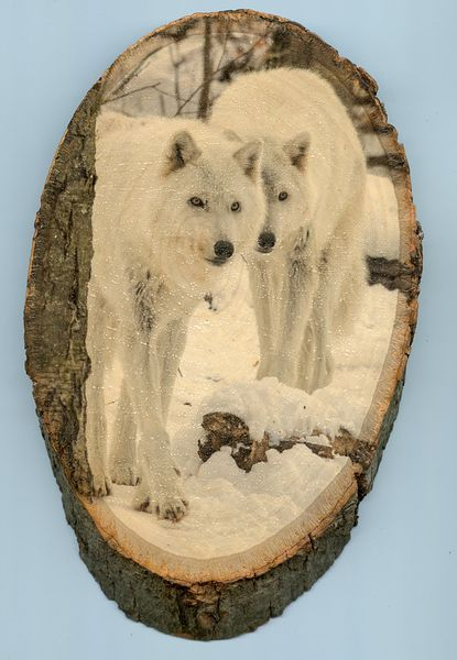wolves_medium_large_wood_