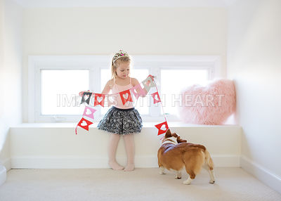 corgi puppy and girl lifestyle with paper hearts indoors