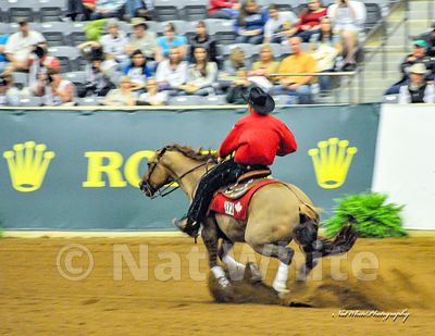2021_calendar_WEG_reining_Date_(September_26_2010Month_DD_YYYY)1_100_sec_at_f_5.6_