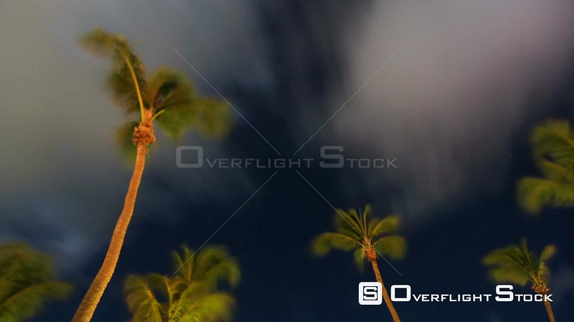 Aruba Star time lapse in Aruba with palm trees and clouds.