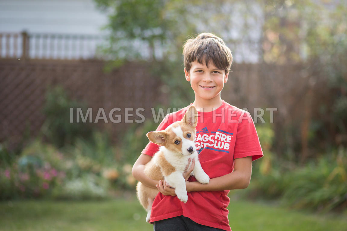 boy holding corgi puppy outside