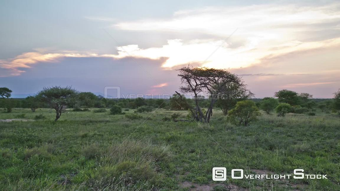 African savannah time lapse during beautiful sunset South Africa