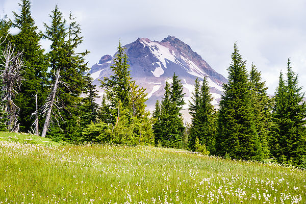 OwenRothPhotography-MasterTIFF-July_22_2019-Timberline_Trail-4691