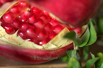 Pomegranate seed.