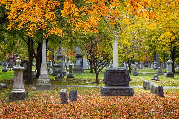 Elmwood_Cemetery_Fall_Color