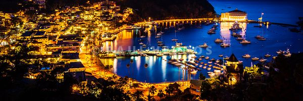 Catalina Island Avalon Bay at Night Pamorama Photo