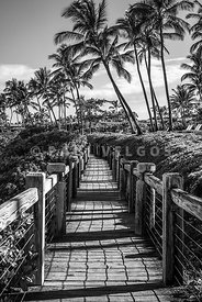 Maui Wailea Beach Path Black and White Photo