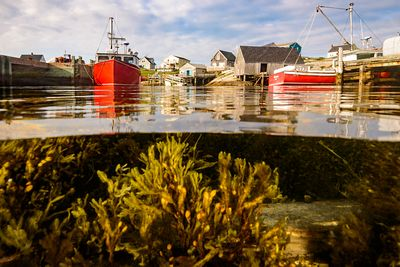 Split image of Peggy's Cove, Nova Scotia