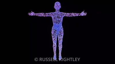 MICROBIOME: Microbes zoom to body and gut.