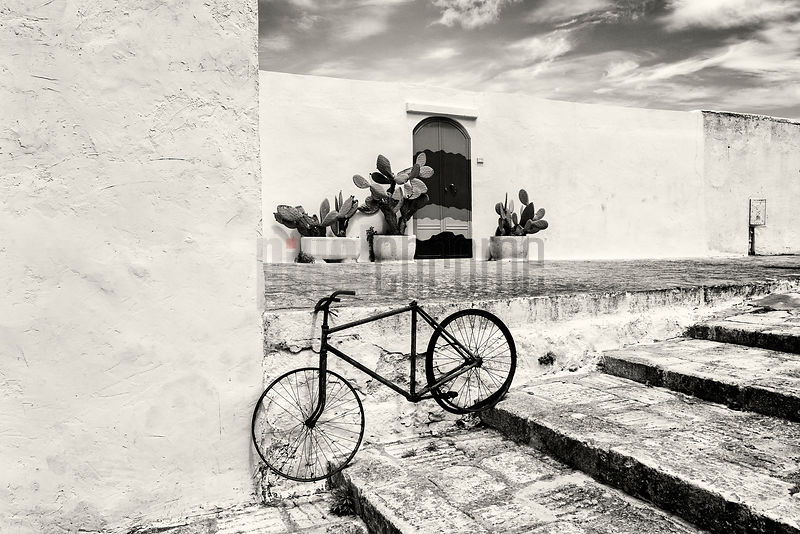 Bicycle, Steps and Prickly Pears
