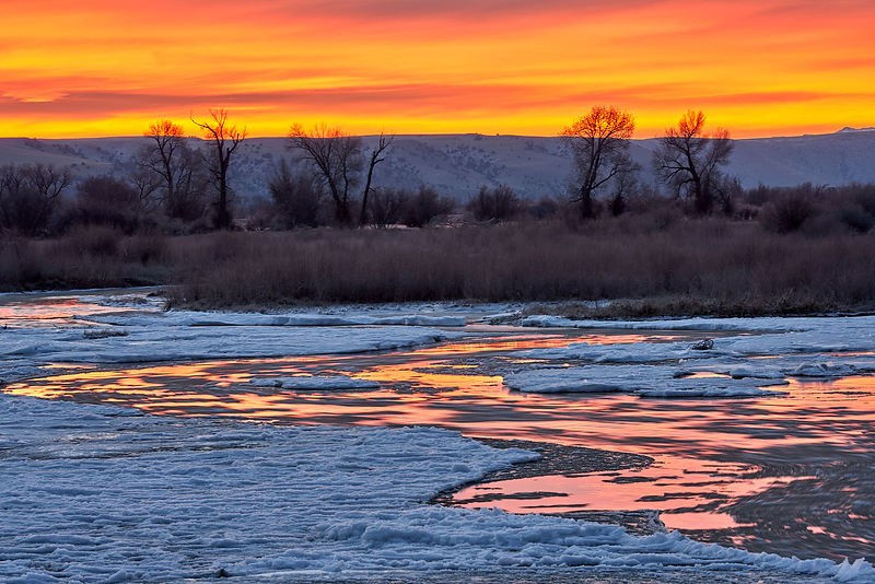 Madison River Winter