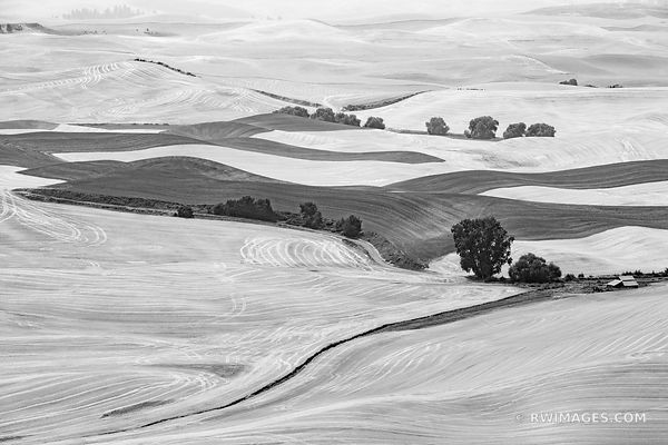 STEPTOE BUTTE STATE PARK PALOUSE WASHINGTON BLACK AND WHITE LANDSCAPE