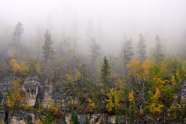 Spearfish_Canyon_Fall_Colors