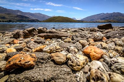 Quartz and schist pebbles on a beach on Lake Wanaka