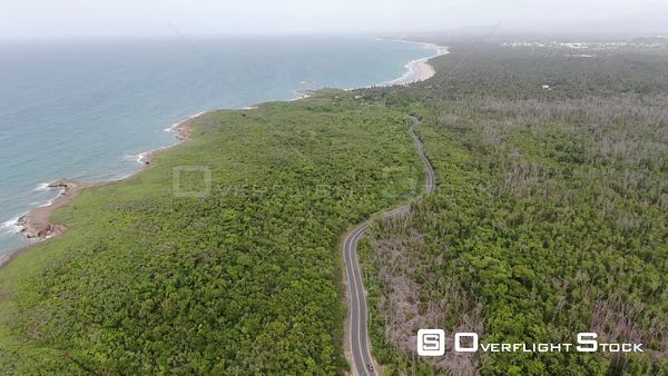 Road in Forest Loiza Beach Puerto Rico Drone Aerial View