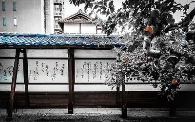 Poet House Morioka Japan (詩人の家)