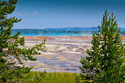 Colored Steam Rising at Grand Prismatic Spring.