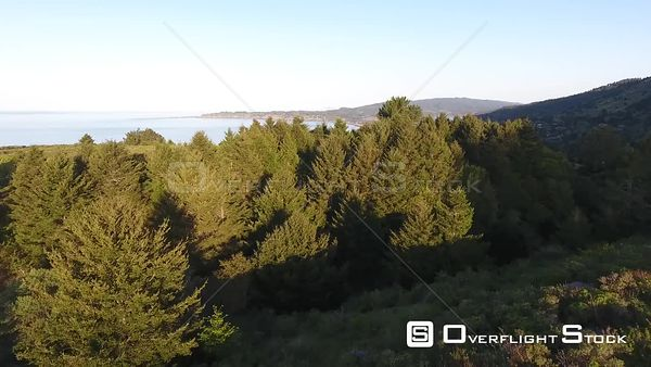 Stinson Beach View from Inland Forest Calm Monring California Drone Aerial View