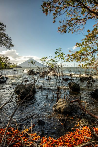 Shore of Ometepe Island in Lake Nicaragu, with Volcano Concepción in background.