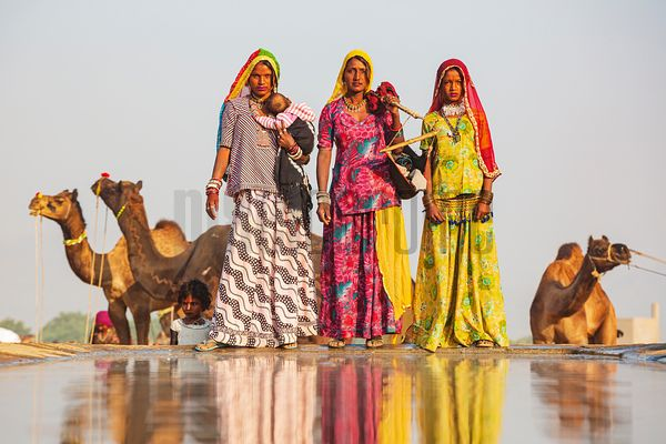 Rajasthani Women at a Water Trough