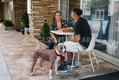 Pit Bull and Family at a Cafe