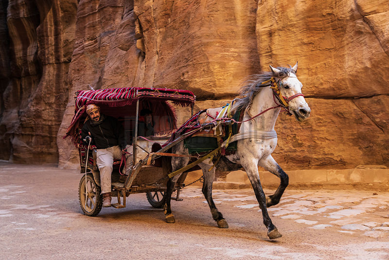 Horse and Cart used to Ferry Visitors to the Treasury through the Siq