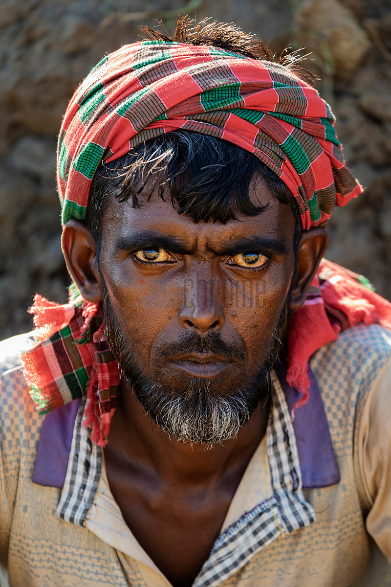 Portrait of a Brick Worker