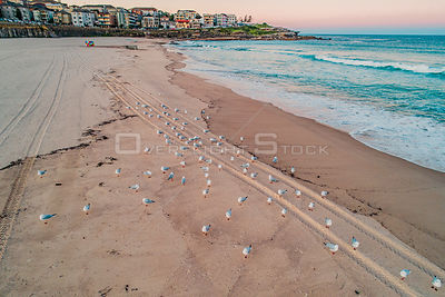Drone Photo of Maroubra Beach