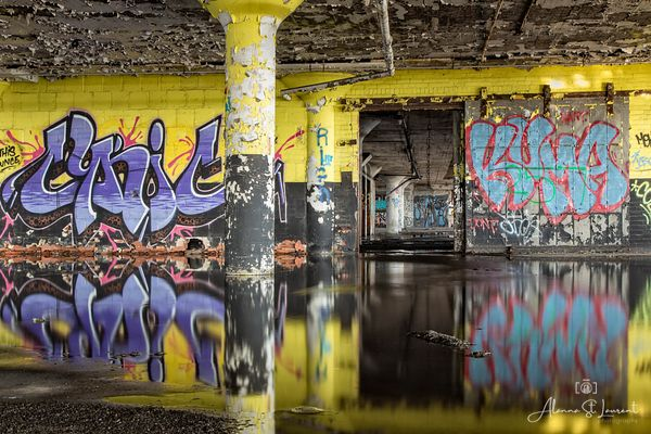 Marine_Terminal_Graffiti_Purple_Yellow_Reflection