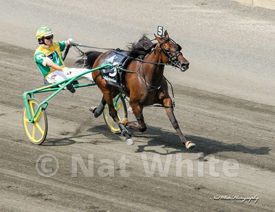 2021_calendar_standardbred_Date_(August_07_2010Month_DD_YYYY)1_800_sec_at_f_8.0_