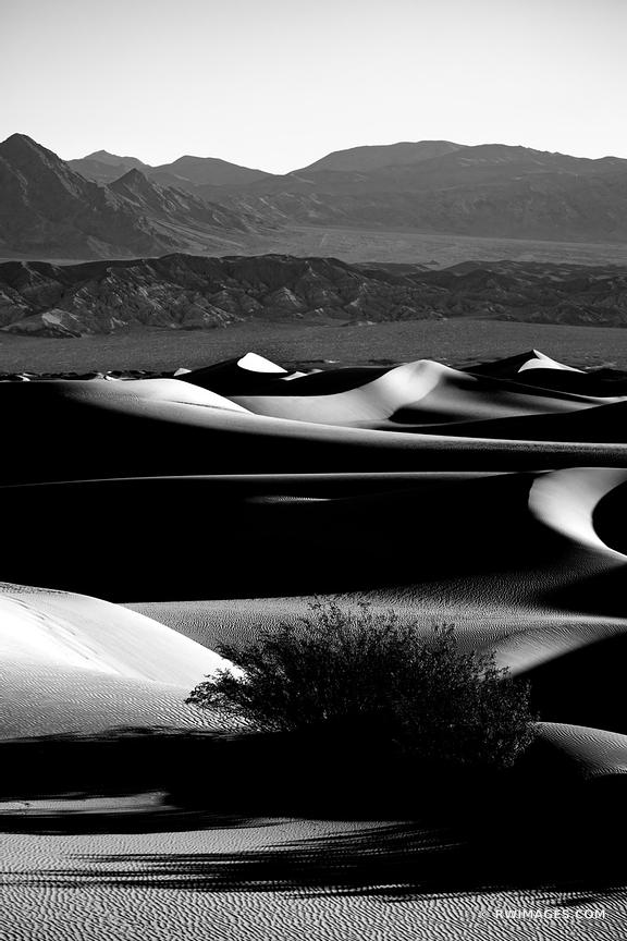 MESQUITE FLAT DUNES DEATH VALLEY CALIFORNIA AMERICAN SOUTHWEST DESERT BLACK AND WHITE VERTICAL LANDSCAPE