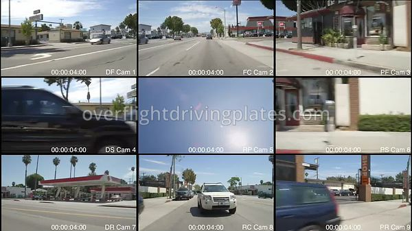 Treelined Residential  Santa Monica California USA - Driving Plate Preview 2012