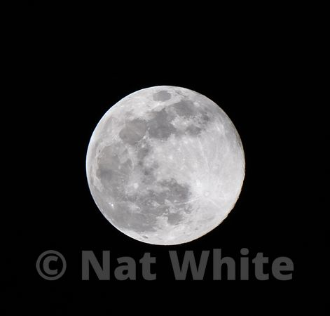 Full_Moon_-April_08_2021_NAT_WHITE