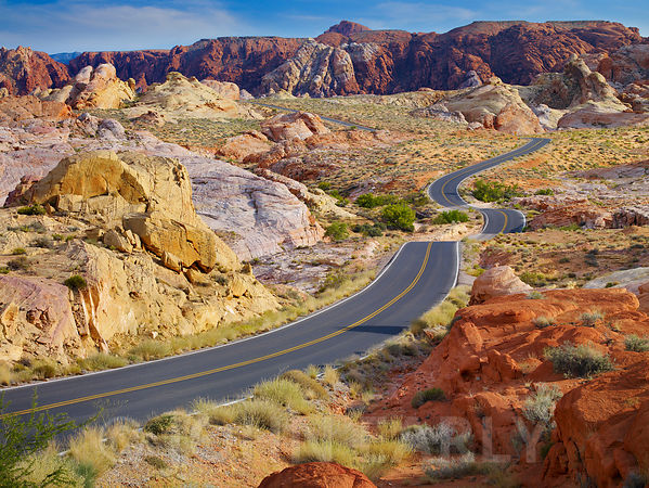 Valley of Fire Road #4