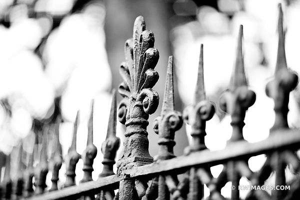 ORNAMENTAL CAST IRON FENCE FRENCH QUARTER NEW ORLEANS BLACK AND WHITE
