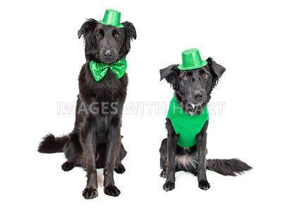 St. Patrick's Day theme