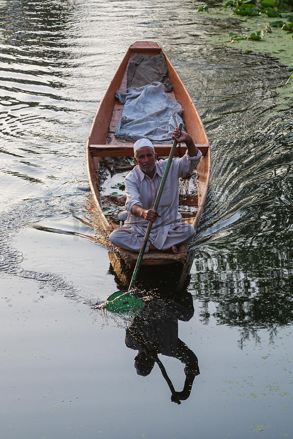 Man Paddling Canoe on Dal Lake